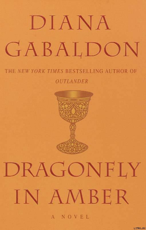 Dragonfly In Amber - pic_1.jpg